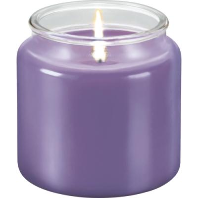 《TESCOMA》香氛蠟燭(普羅旺斯410g)