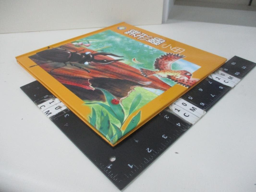 【書寶二手書T8/少年童書_DUX】鍬形蟲小甲
