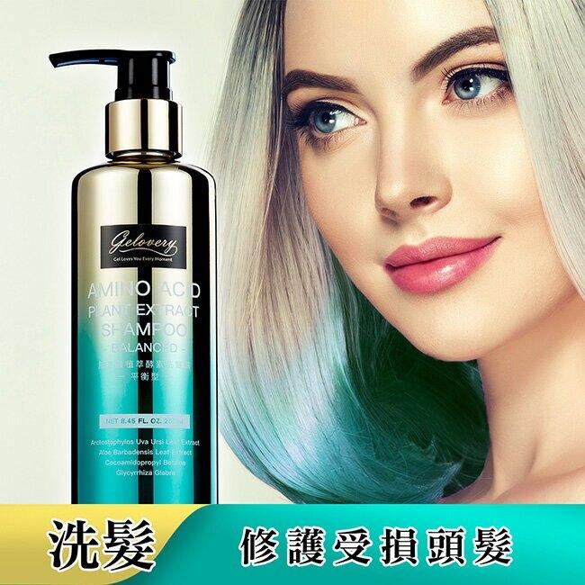 Gelovery蒟若妮胺基酸植萃酵素洗髮露250ml-平衡型