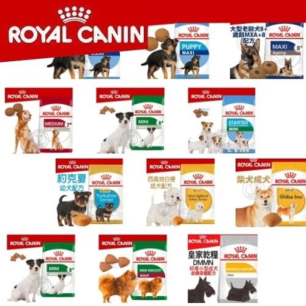 【培菓幸福寵物專營店】法國皇家ROYALCANI》SHN 新皇家大型成犬4KG MXA