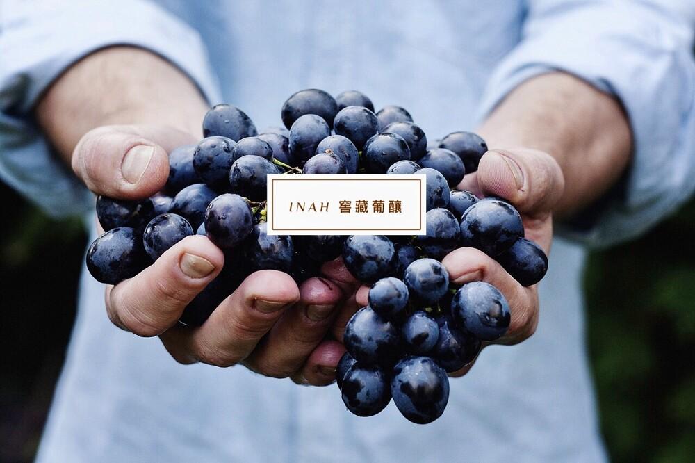 800顆葡萄 葡釀  希哈 + 梅洛 超划算組合價