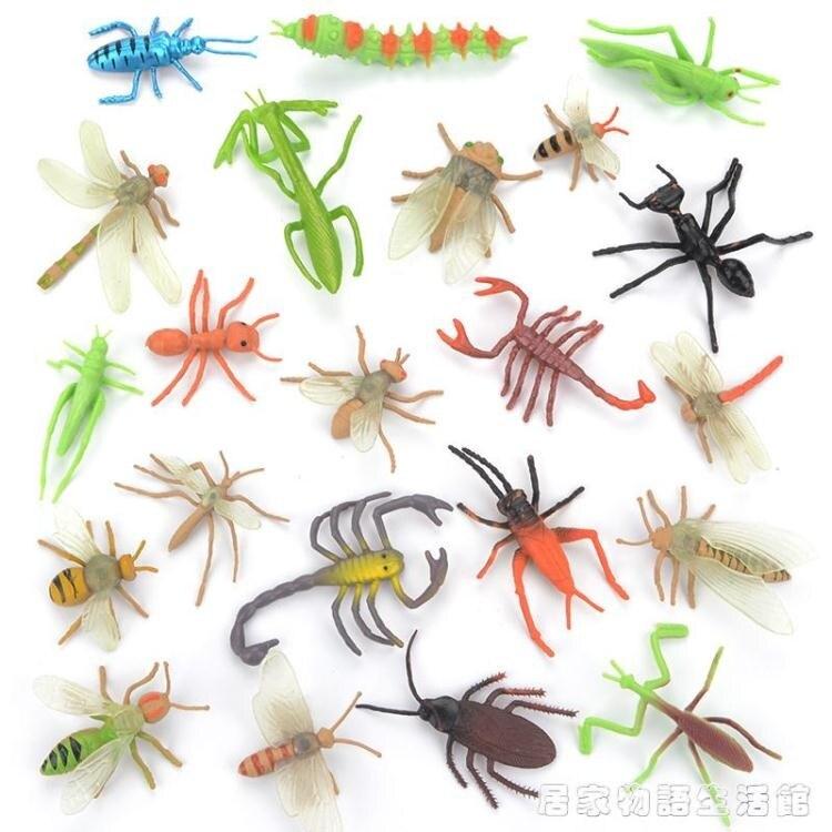 兒童昆蟲玩具塑膠仿真動物模型蜘蛛蝴蝶蜜蜂蜈蚣螞蟻大小擺件套裝