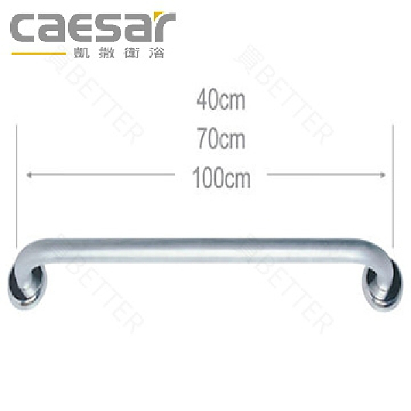 【買BETTER】凱撒銀髮族配件/浴室扶手/浴室防跌扶手 GB131一字型扶手(40cm)