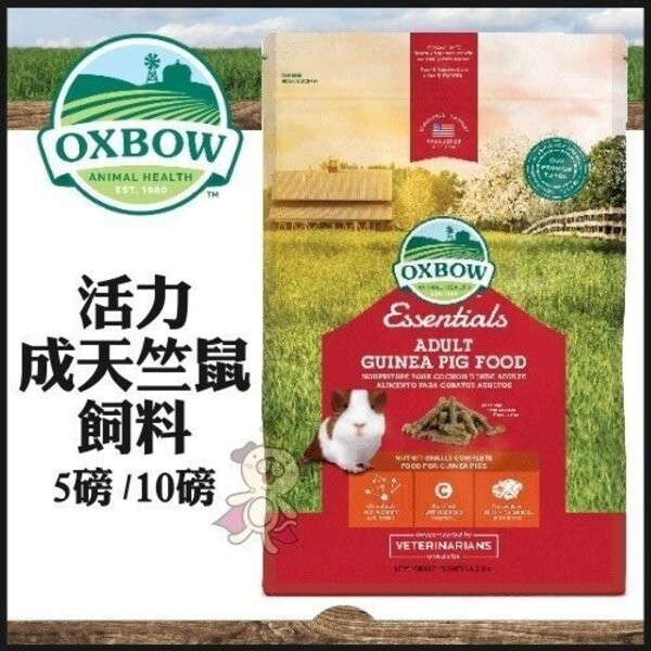 美國oxbow活力成天竺鼠配方飼料10lb