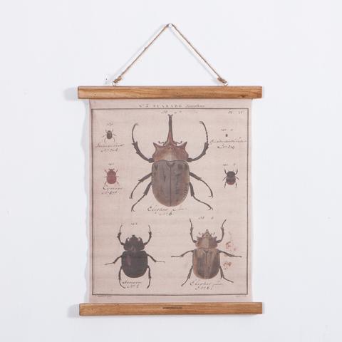 甲蟲卷軸掛畫47*40