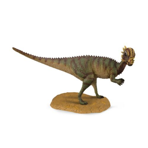 動物模型《 COLLECTA 》厚頭龍