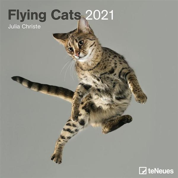 2021 teNeues Wall Calendar/ Flying Cats eslite誠品