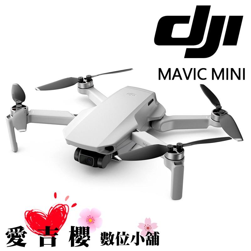 DJI MAVIC MINI 大疆 空拍機 暢飛 套裝版 達人配件玩家套組 無人機 0利率 公司貨 128G Care