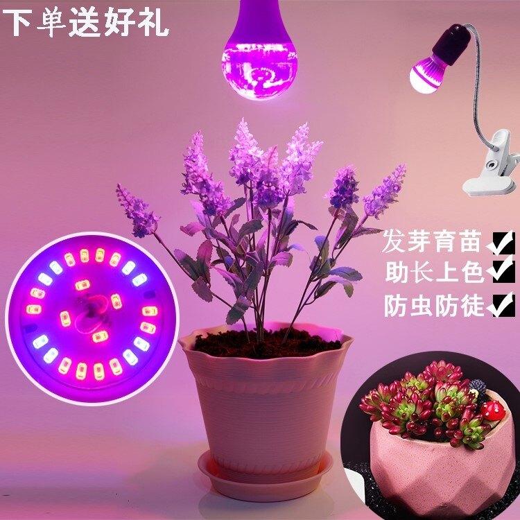 植物補光燈 e27螺口生石花多肉植物補光燈泡生長led室內燈紅藍上色全光譜紅外