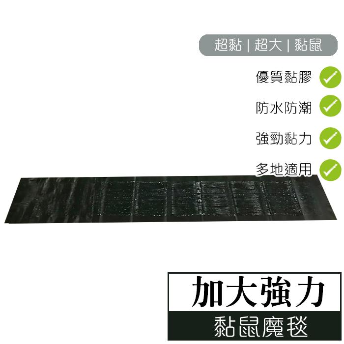 地表最強黏鼠魔毯【大女人嚴選】台灣現貨● 老鼠殺手 黏鼠板 餐廳 廚房