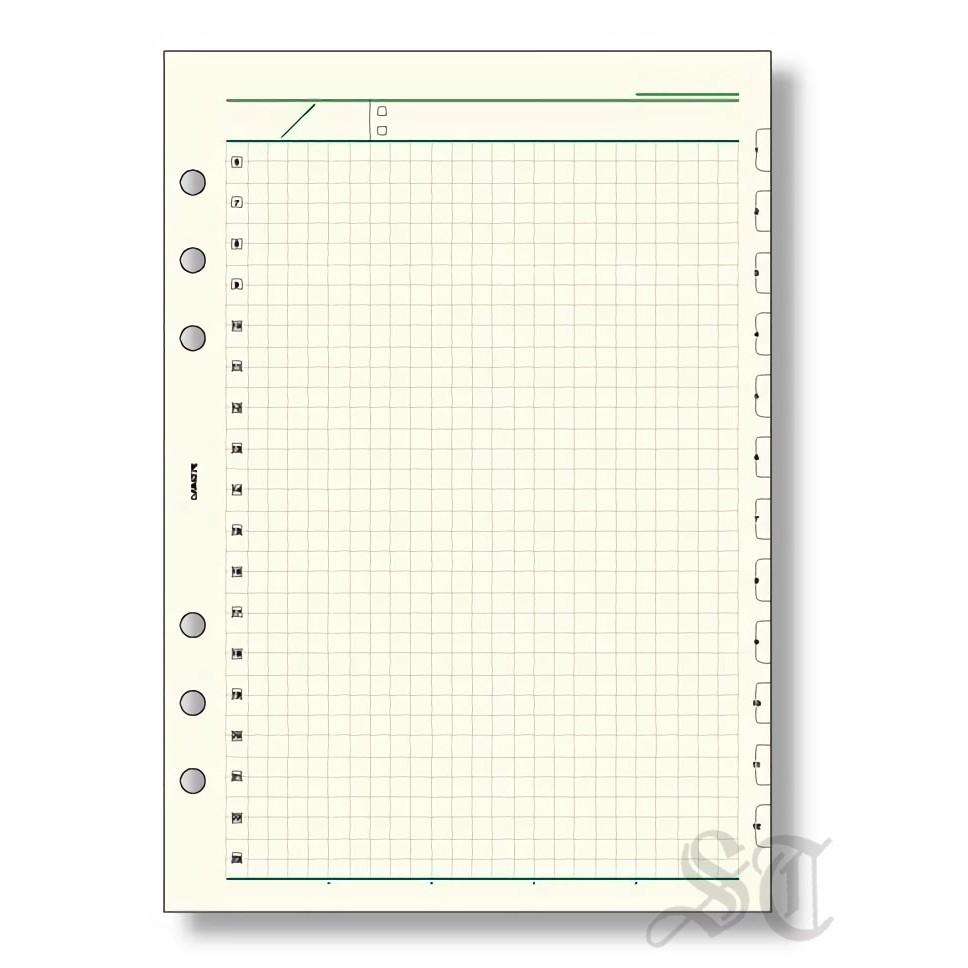 Raymay 達文西系列 一日自由記錄方眼格內頁紙 6孔A5尺寸 巴川紙 DAR4276 宣弟精品文具館