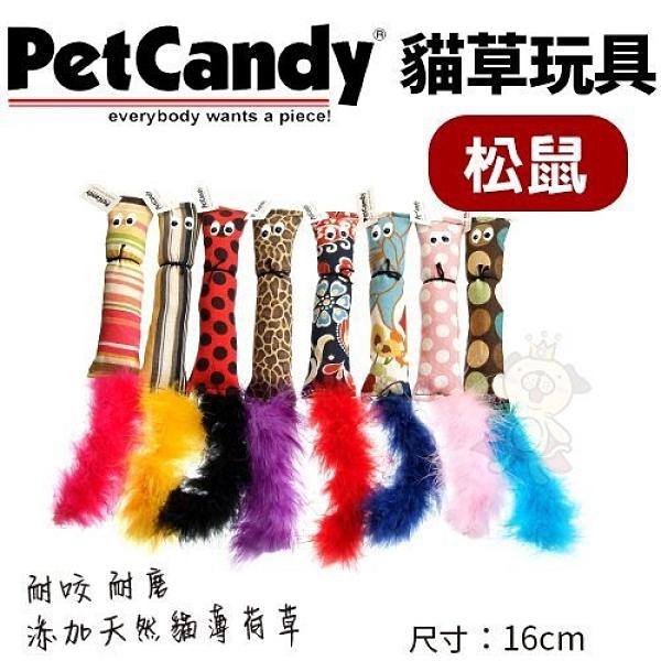 *WANG*PetCandy貓草玩具-松鼠.添加貓薄荷草 耐咬 耐磨.貓玩具.隨機出貨不挑款