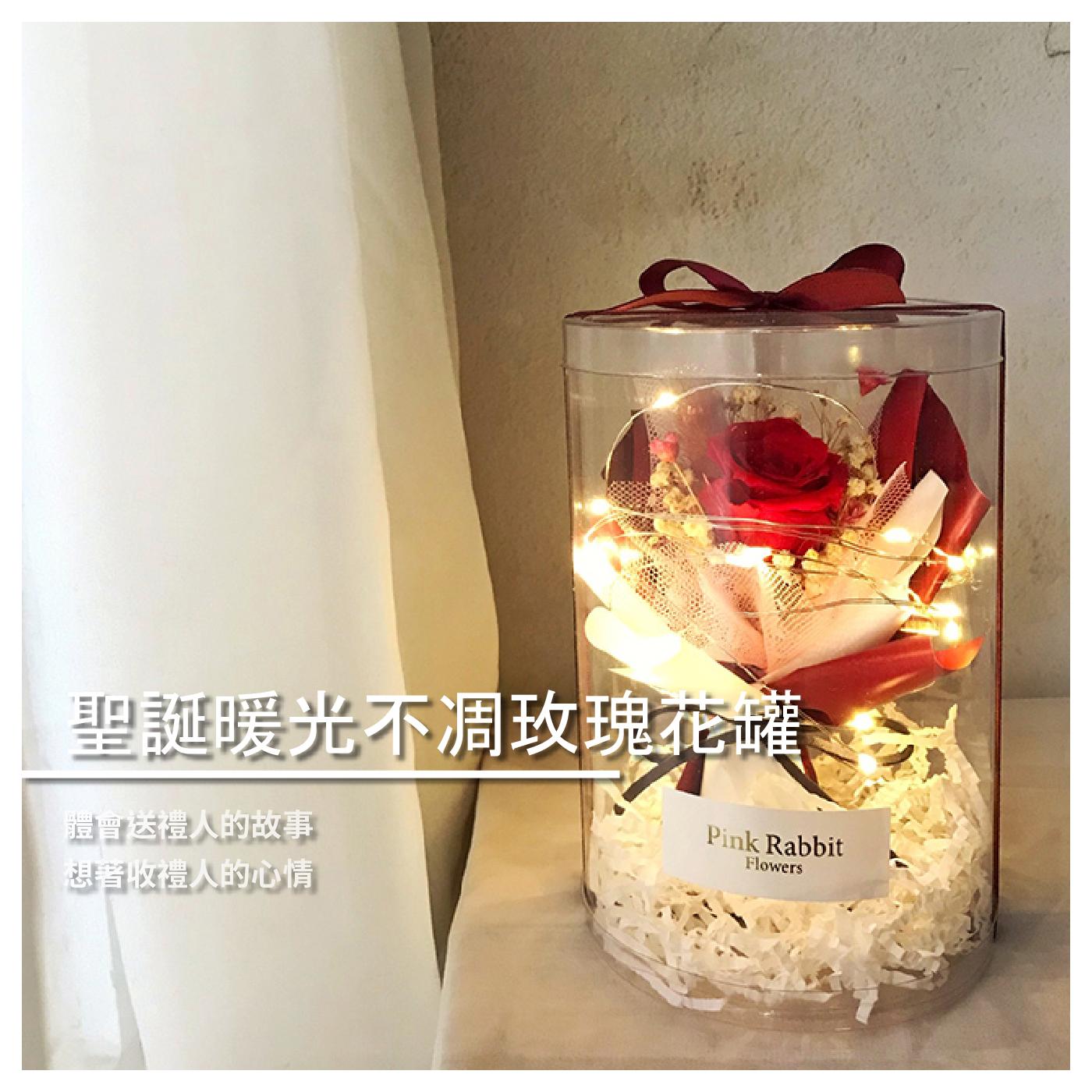 【Pink Rabbit Garden】『PRG永生花乾燥花』聖誕暖光不凋玫瑰花罐 / 花草 / 園藝