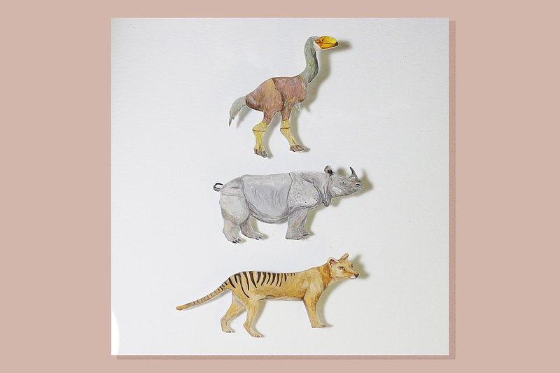 牛鳥 Bullockornis / 消失動物系列 / 手繪襟針