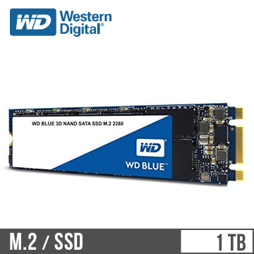 WD威騰 3D NAND 1TB M.2 固態硬碟 藍標(WDS100T2B0B)