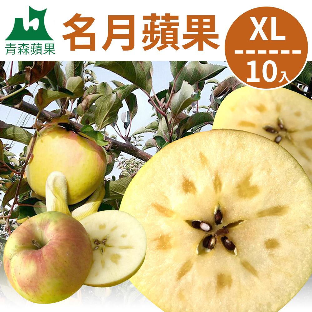 [甜露露]青森名月蘋果XL