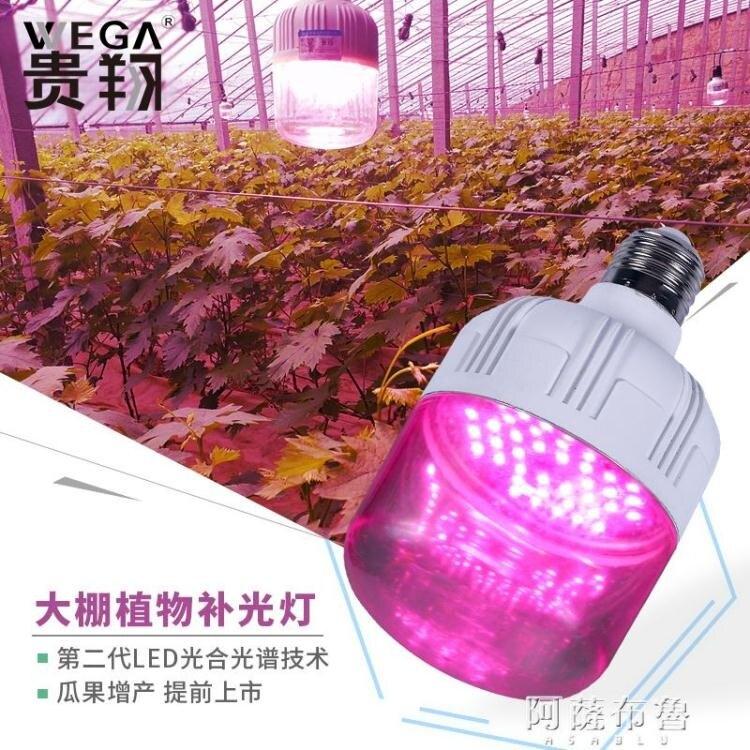植物燈 貴翔 植物生長燈LED蘭花蔬菜大棚火龍果草莓仿陽光光合作用補光燈