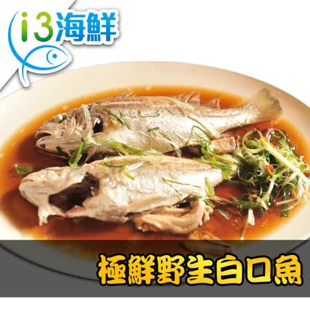 【愛上海鮮】極鮮野生白口魚9包組(270g±10%/包/兩尾/包)