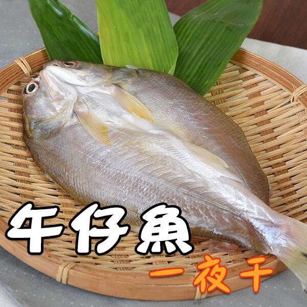 午仔魚一夜干-250g/包 [免運]