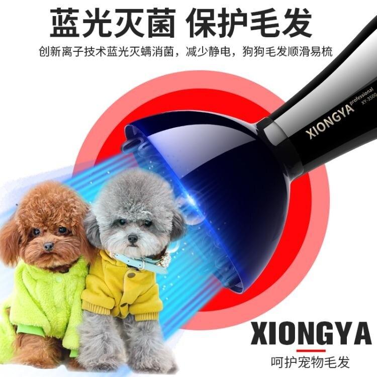 寵物吹風機 德國寵物吹風機大功率狗狗專用吹毛神器金毛泰迪小型大型犬吹水機 MKS阿薩布魯