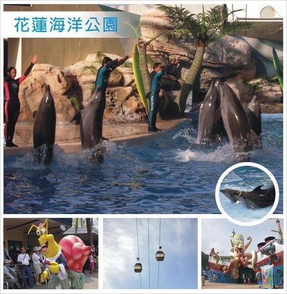 花蓮-海洋公園(全票)門票1張
