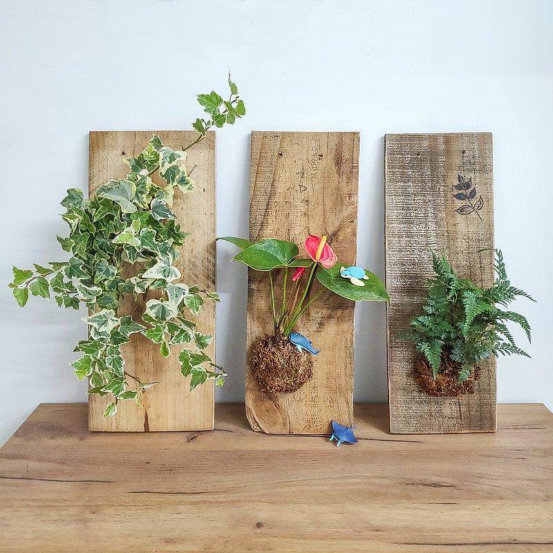 綠上板・高雄・植物上板・有溫度的卡片・手作生日禮物・職人體驗