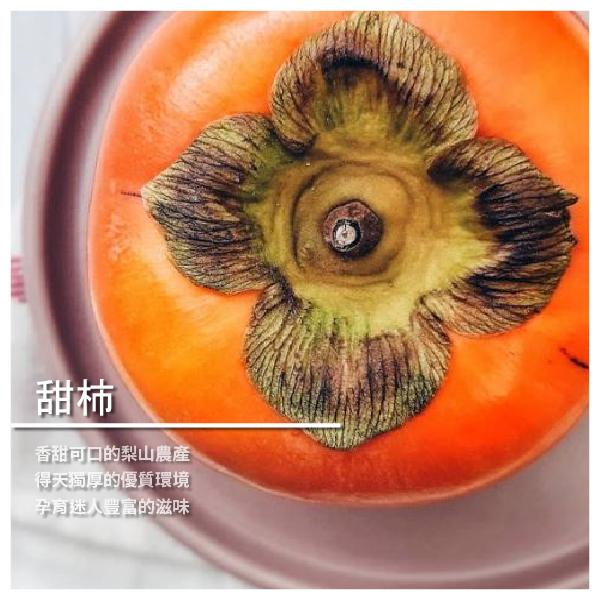【梨山金銀谷農園】日本甜柿 9-10兩/顆 4.2斤裝