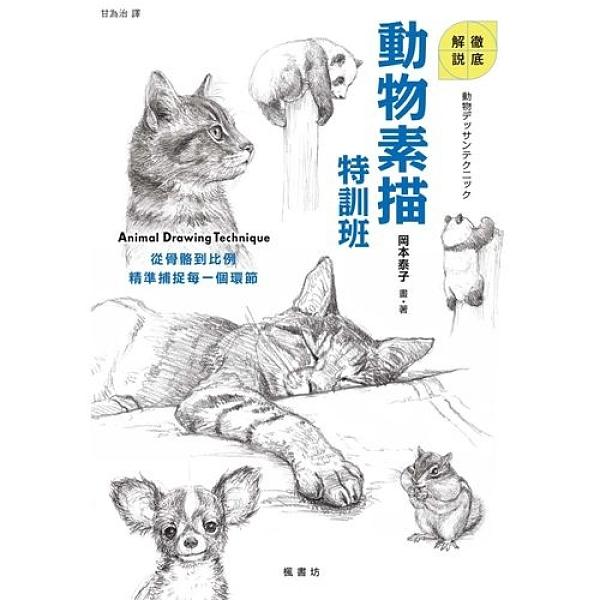動物素描特訓班