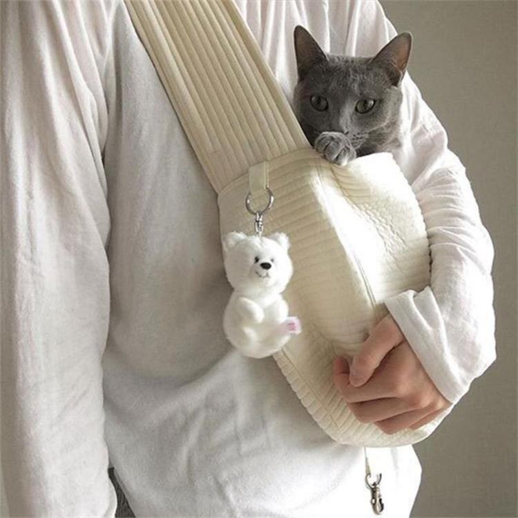 寵物外出包 貓包斜挎寵物外出便攜中小型犬狗窩ulzzang書包袋出門旅游透氣背