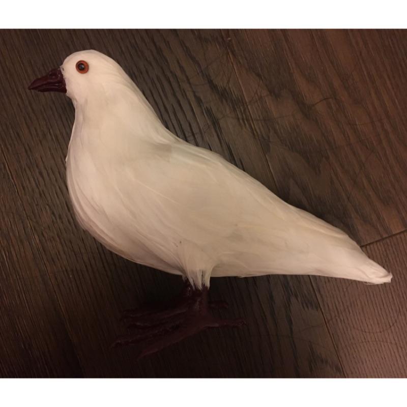 造型 裝飾 道具 假 仿真 白鴿