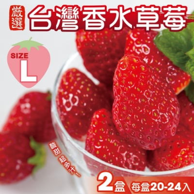 顧三頓-台灣特選香水草莓L號x2盒(每盒20-24入)