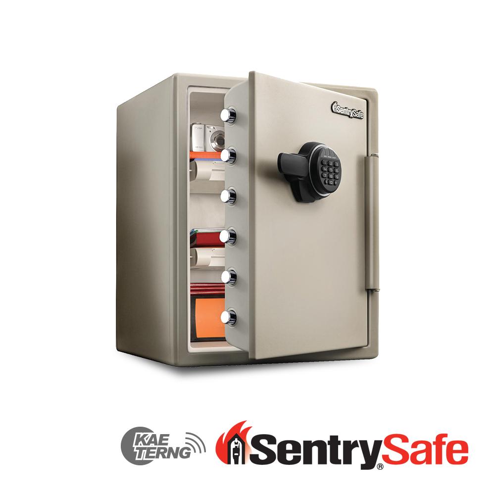 Sentry Safe 電子密碼鎖防火金庫 SF205EV