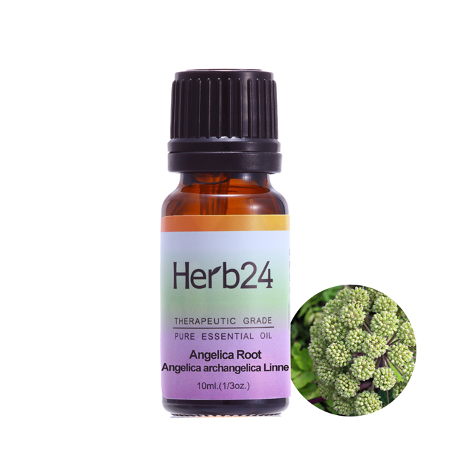 【草本24。Herb24】歐白芷 純質精油 10ml