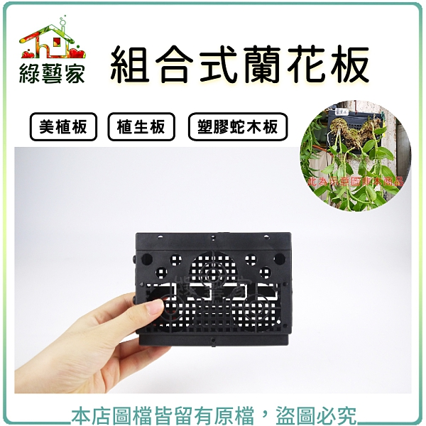 【綠藝家】組合式蘭花板(美植板.植生板.塑膠蛇木板)