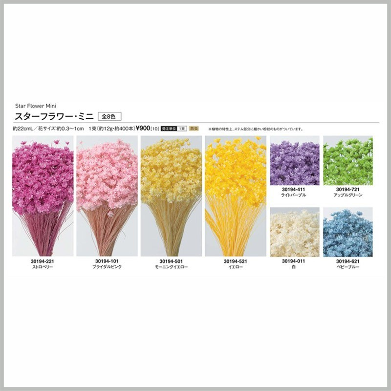 進口大地農園乾燥天然小星花-乾燥花圈 乾燥花束 不凋花 拍照道具 手作素材 室內擺飾 裝飾插花鄉村