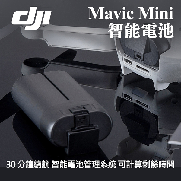 【Mavic Mini 原廠 電池】空拍 無人機 DJI 大疆 智能 飛行 鋰電池 充電 續航30分鐘 公司貨 屮S6