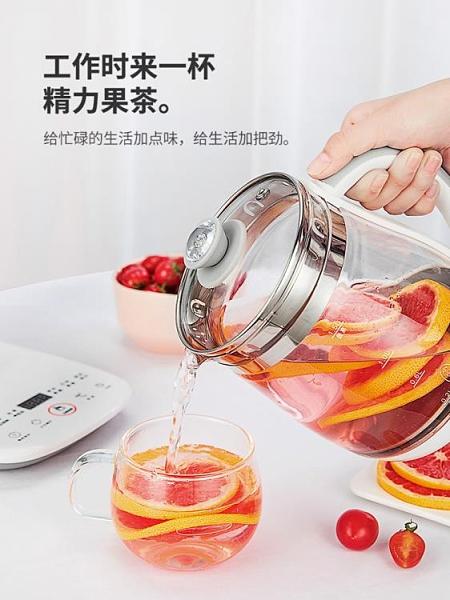 養生壺 辦公室小型全自動加厚玻璃養身花茶壺家用多功能煮茶器 港仔會社