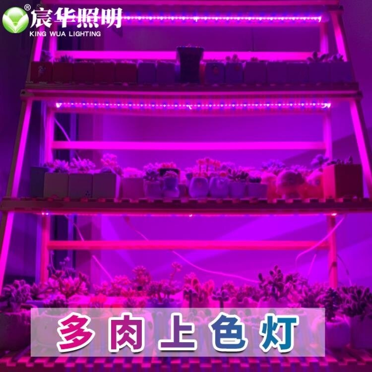 植物補光燈 宸華led植物生長燈全光譜多肉補光上色育苗蔬菜防徒家用室內  免運