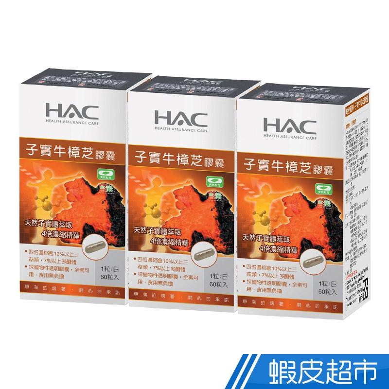 永信HAC 高濃縮子實牛樟芝膠囊 3瓶組 60粒/瓶 廠商直送