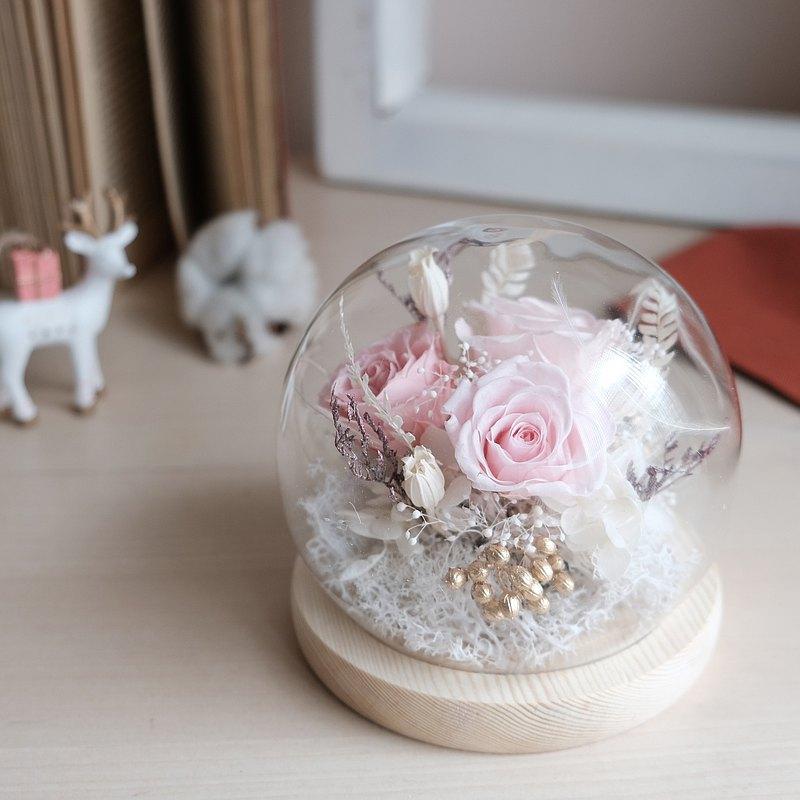 玻璃鐘罩/紅色/不凋花/永生花/乾燥花/ 聖誕禮物