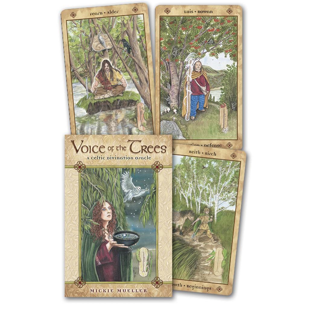 樹之音神諭卡|Llewellyn Voice Of The Trees 凱爾特歐甘樹文,解讀特定的樹與樹文【左西購物網】