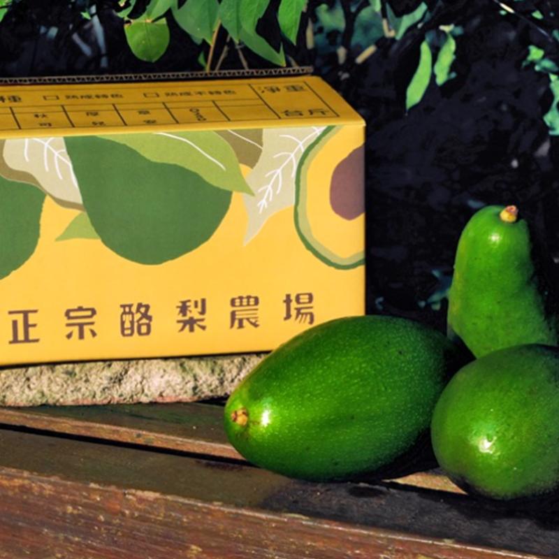 [正宗酪梨農場] 新鮮優質酪梨 (4 斤/包)