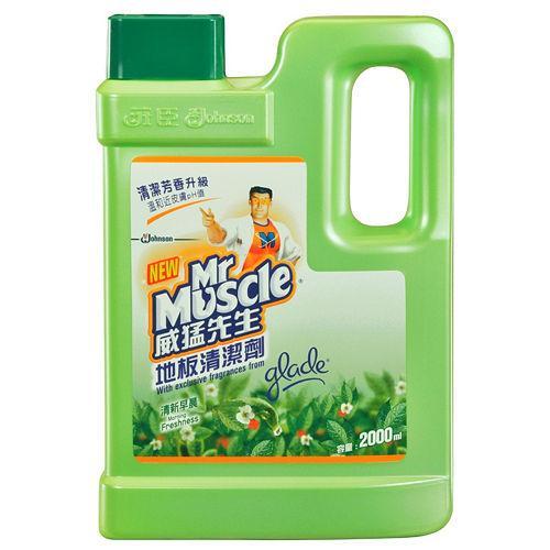 威猛先生地板清潔劑-清新早晨2000ml【愛買】