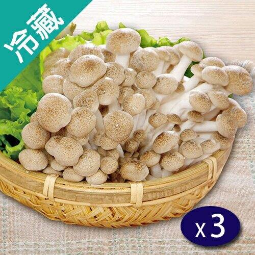 【有機】鴻喜菇(100g5%/包)X3【愛買冷藏】