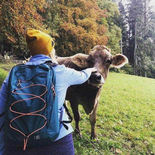VICTORINOX 瑞士維氏 登山包 後背包 休閒包 雙肩後背包 商務包 TRGE-606898 (藍)