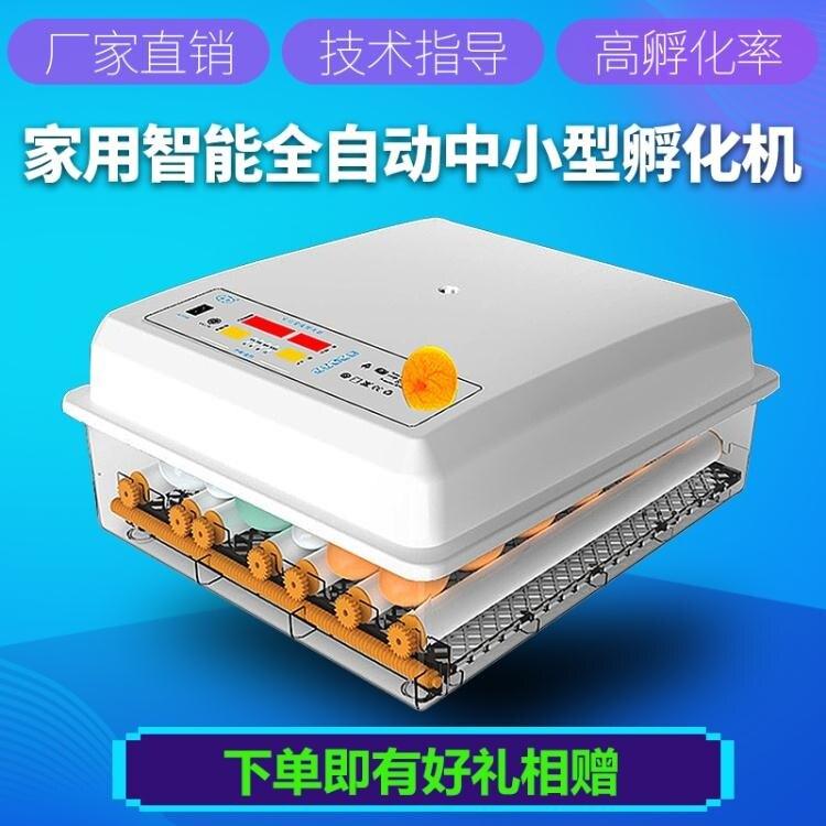 孵化器 佳裕孵化器小型家用全自動智慧鴿子蛋孵蛋器孵化機孵小雞的孵化箱LX 美物 8號時光