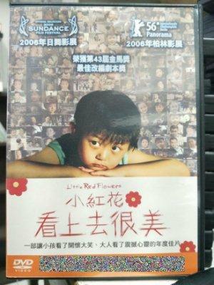 挖寶二手片-L09-056-正版DVD-華語【小紅花-看上去很美】董博文 寧元元(直購價)