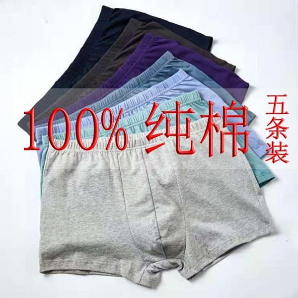 清倉特價 五條 男內褲平角100%全棉成人性感青年四角純棉大紅本命年200斤