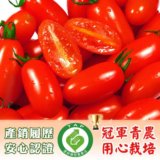 【鮮果有邑】美濃嚴選雙認證薄皮香甜爆汁玉女小蕃茄禮盒4箱(共16斤)