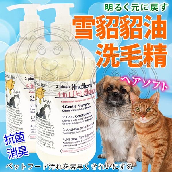 【培菓寵物48H出貨】美國《雪貂》貂油洗毛精500ml*1瓶(蝦)